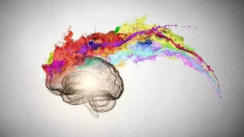 psikoloji ve beyin