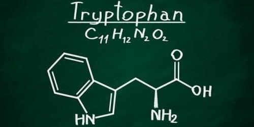 triptofan molekülü