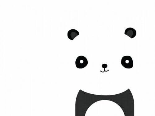 bir panda ayısı