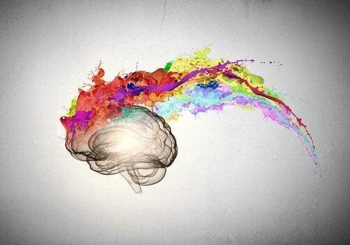 beyin ve renk patlaması ilüstrasyonu