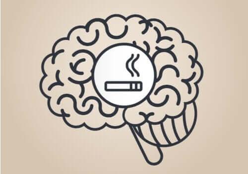 Nikotin Beyni Nasıl Etkiler?