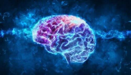 renklendirilmiş beyin figürü