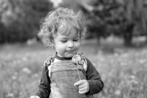 elinde karahindiba tutan minik çocuk