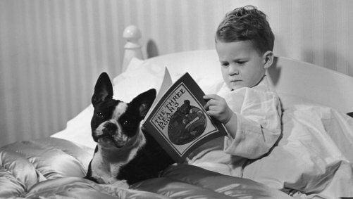 yatağında köpeğiyle birlikte kitap okuyan çocuk