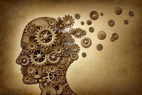 insan beyni çarklar
