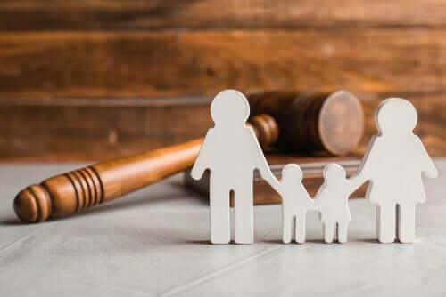 Ortak Velayet Kavramı ve Hukuki Yönleri