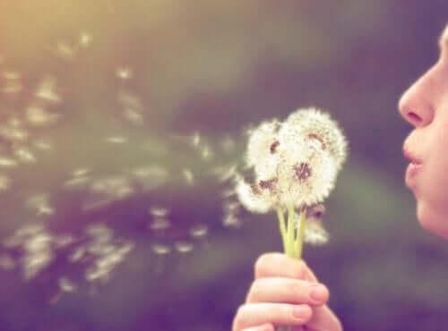 Bir karahindiba çiçeğini üfleyen birinin fotoğrafı.