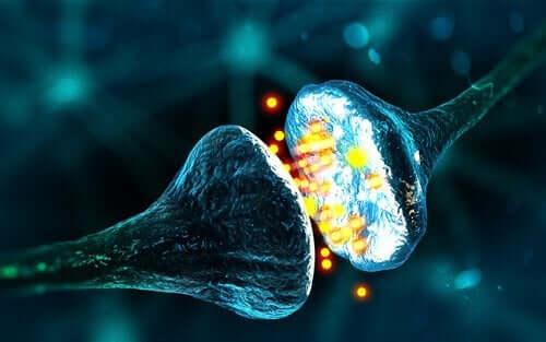 Sinapslardaki elektrik akımına dair örnek görsel.