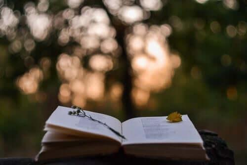 ağaçların içinde sayfaları açık kitap ve Honoré de Balzac