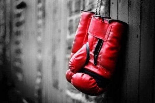 Duvara asılmış bir çift boks eldiveni.