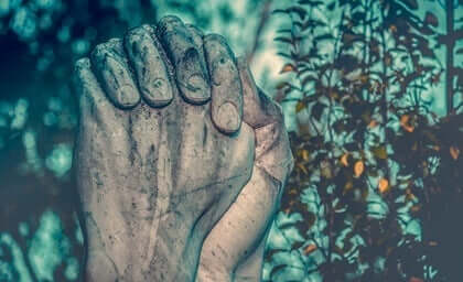 Şefkatli Empati: Duygulardan Eylemlere
