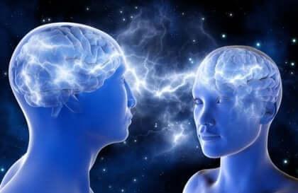 etkileşen beyinler zihnin teorisi