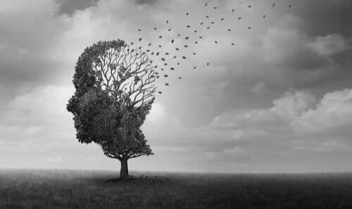İnsan kafası şeklindeki bir ağaç.