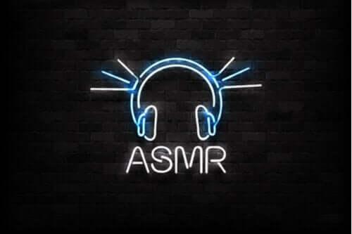 LED ışıklarla duvara yazılmış ASMR sözcüğü.