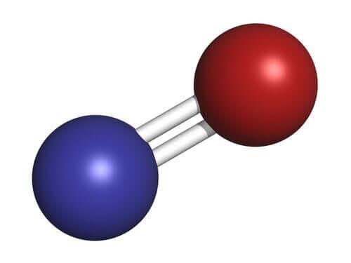 Nitrik Oksit: Şaşırtıcı Gaz Nörotransmiter