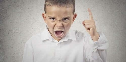Parmağı havada, öfkeli bir şekilde bağıran bir erkek çocuğu.
