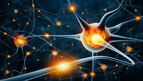Nöronal aktivite çizimi.