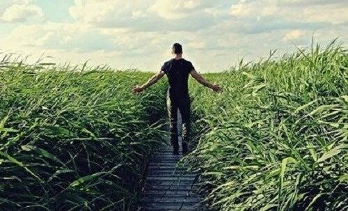 Yeşil bir tarlanın ortasında duran bir adam.