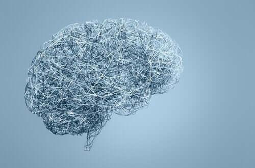 Tellerden yapılmış bir insan beyni.