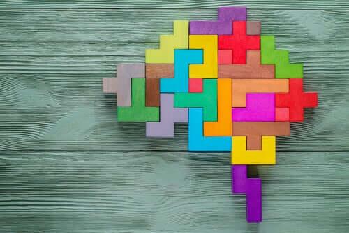 Renkli beyin yapbozu