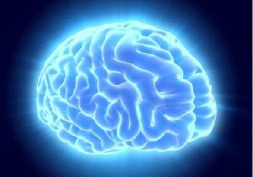 Mavi bir ışıkla aydınlatılmış bir beyin.