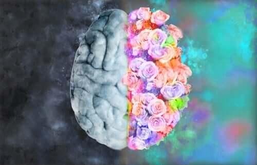 Nöroestetik: Nöroloji ve Sanatın Buluşması