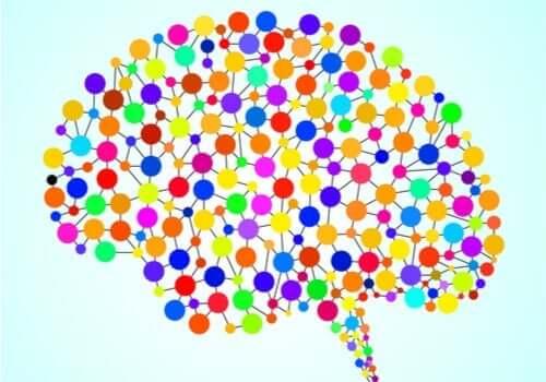 Beynin Daha Önce Bilinmeyen 97 Alanı