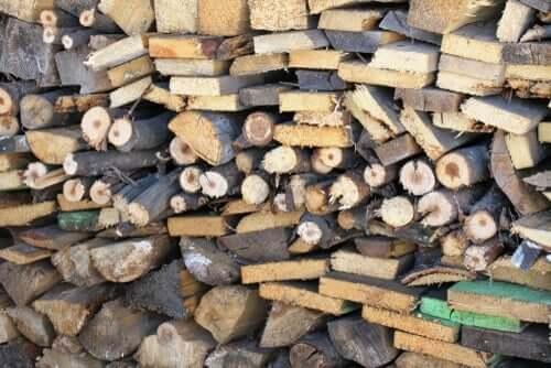 Kesilmiş, ateşe atılmaya hazır odunlar.