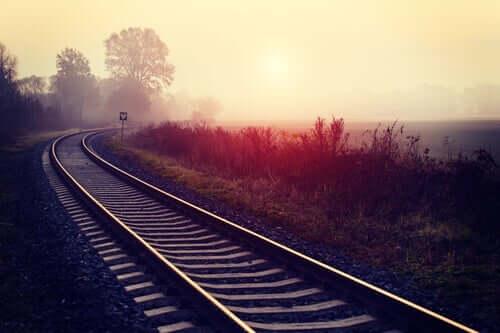 tren rayları