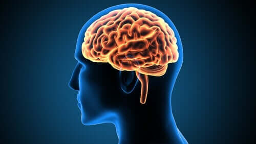 Victor Leborgne – Bir Nörobilim Vakası