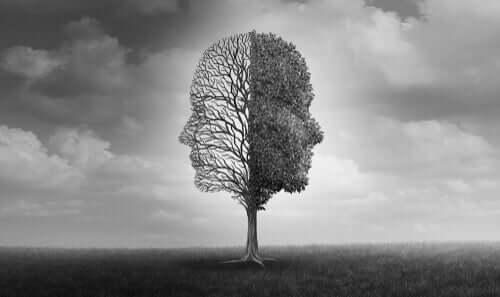 Surat şeklinde budanmış, bir tarafında yapraklar olan, diğer tarafındaki yapraklar dökülmüş bir ağaç.