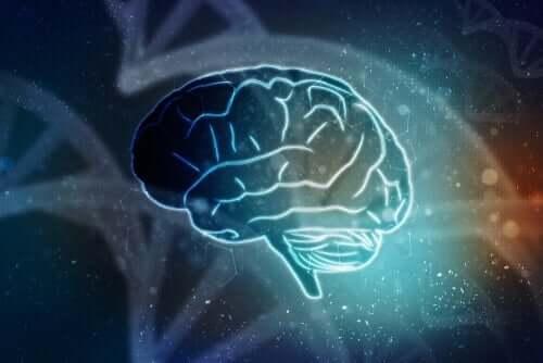 İzole Beyin - Vücutsuz Yaşamak