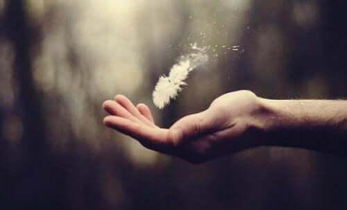 Bir el ve bir tüyün fotoğrafı.