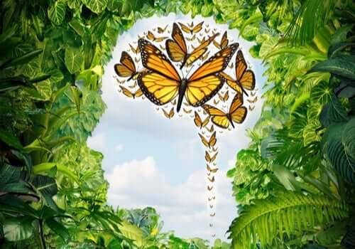 yapraklar arasındaki kafa silüeti ve kelebeklerle dolu bir beyin