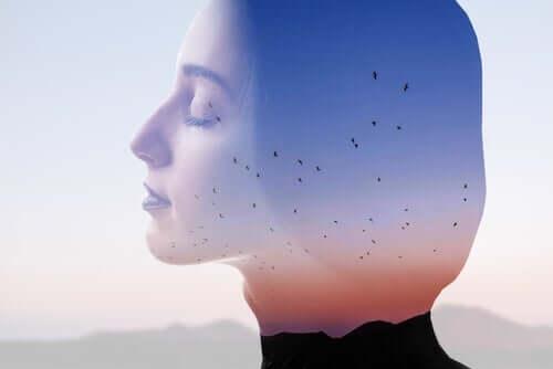 gün batımında uçan kuşlar ve sükunet içindeki kadın izdüşümü