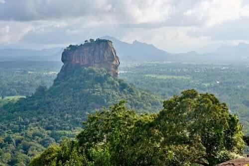Sri Lanka manzarası