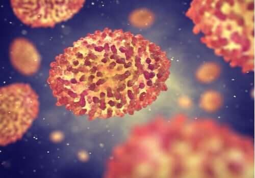 Mikroskop altındaki virüsler.