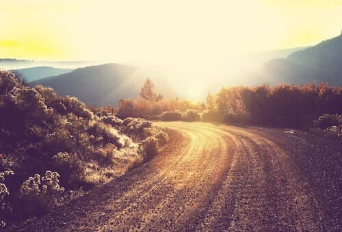 güneşli yol