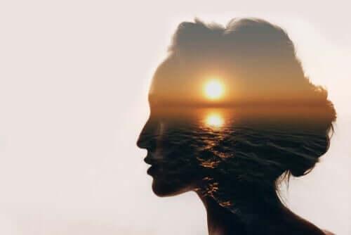 Sol profilini gösteren kadın silüeti içinde gün batımı manzarası