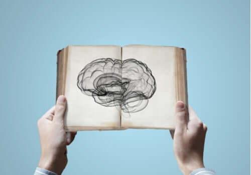 Sinirbilimi: Bilginin Kalıtımla Aktarılması Mümkün Mü?