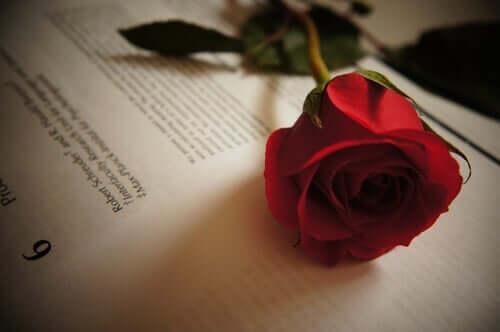 Tirso de Molina - Beş Aşk Alıntısı