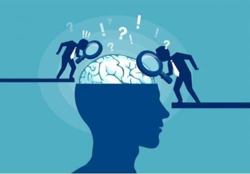 Beyinle ilgili efsanelerin yıkılması.