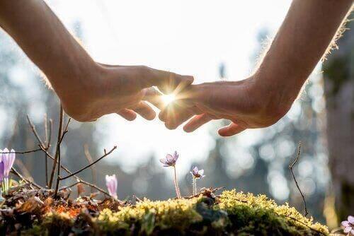 çiçeğe gölge eden eller ve döngüsel ekonomi