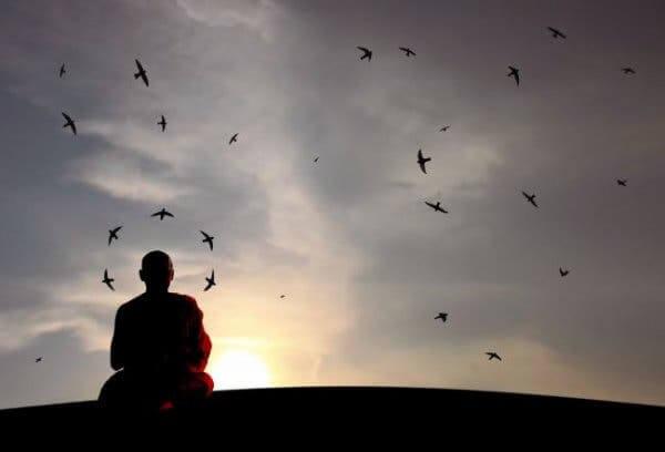 meditasyon yapan adamın üstünde uçan kuşlar