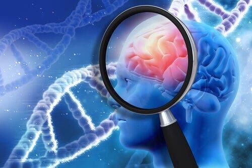 Beynin detayları