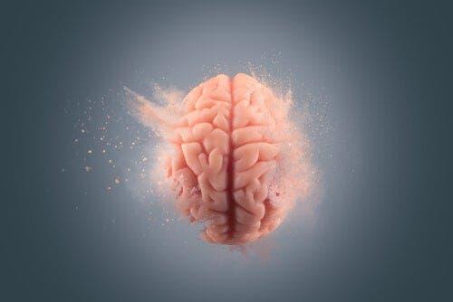 Bir beyin illüstrasyonu.