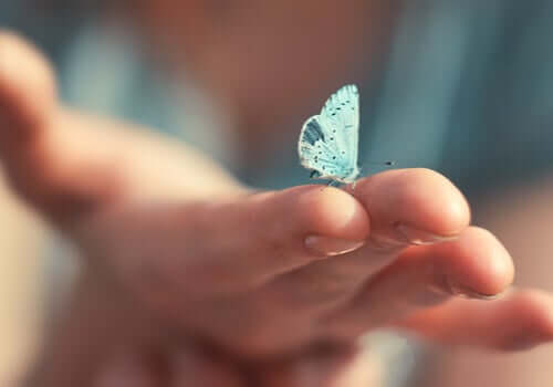 El ve kelebek