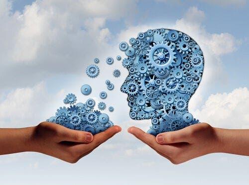 Nöropsikolojik Rehabilitasyon Ne Demektir?