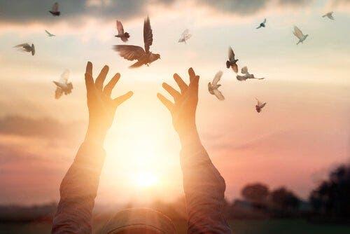 Uçan kuşlara erişmeye çalışan bir kadın.
