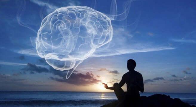 Düşünsel bir beyin